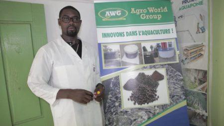 Quelques activités aquacole chez d'Agro Word Group