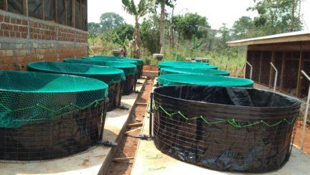 Fabrication des bacs en PVC pour pisciculture