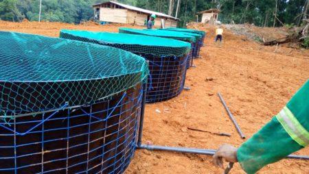 Installation des bacs au compte d'un client pour la production des poissons silures à Douala