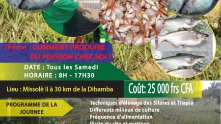 Atelier de formation en aquaculture  tous les samedis